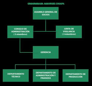 Estructura Organizativa Agronuezchoapa