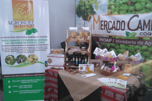 Agronuez Choapa Cooperative: leadership, unity and good coexistence